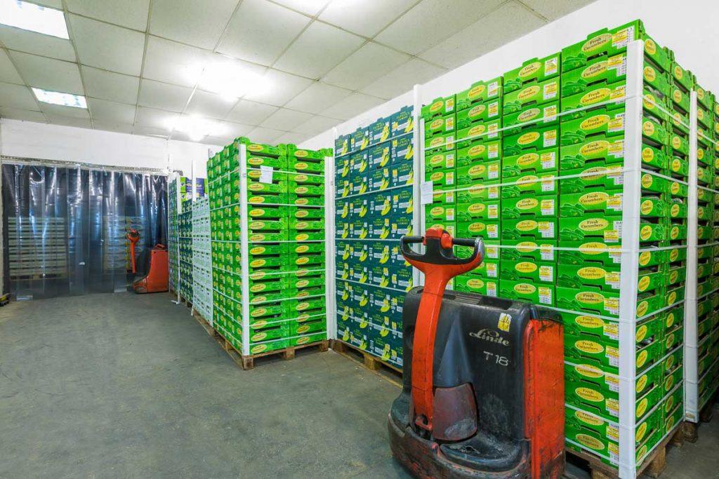 склад пълен с зеленчуци от фотографско заснемане на борси и тържища софия