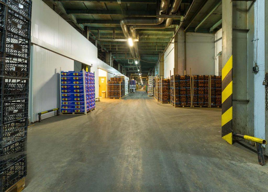 складови помещения пълни с зеленчуци от фотография на складове софия