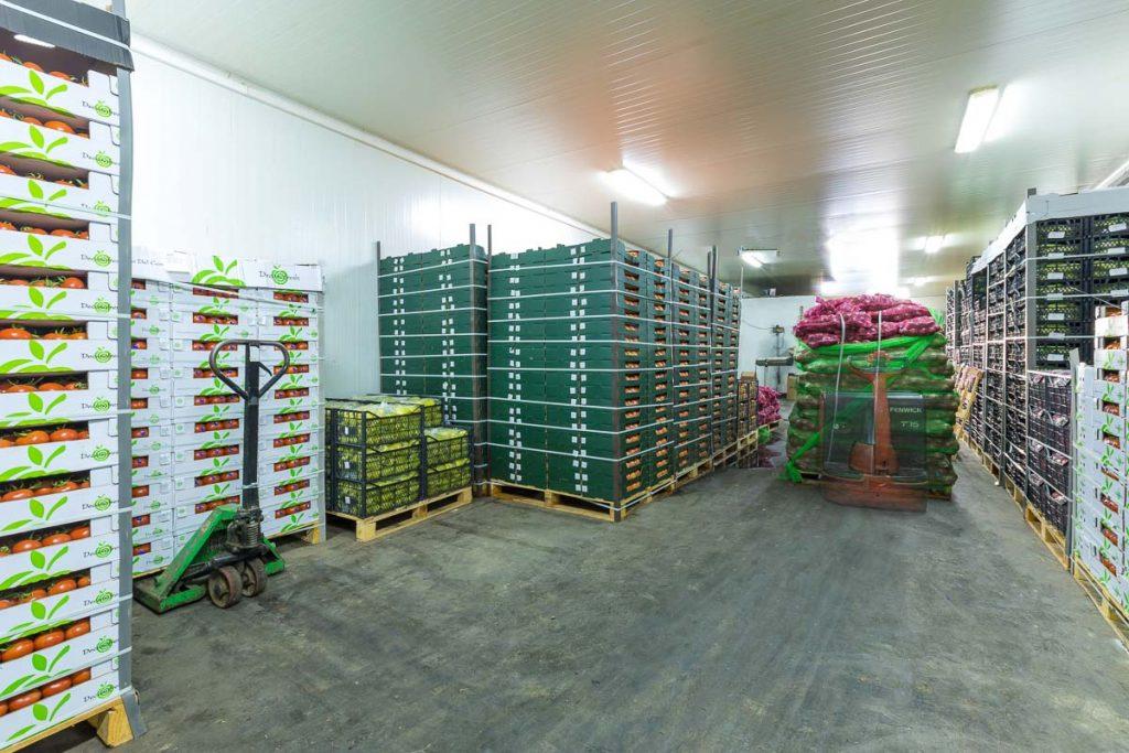 хладилни камери пълни с плодове и зеленчуци от заснемане на складови помещения