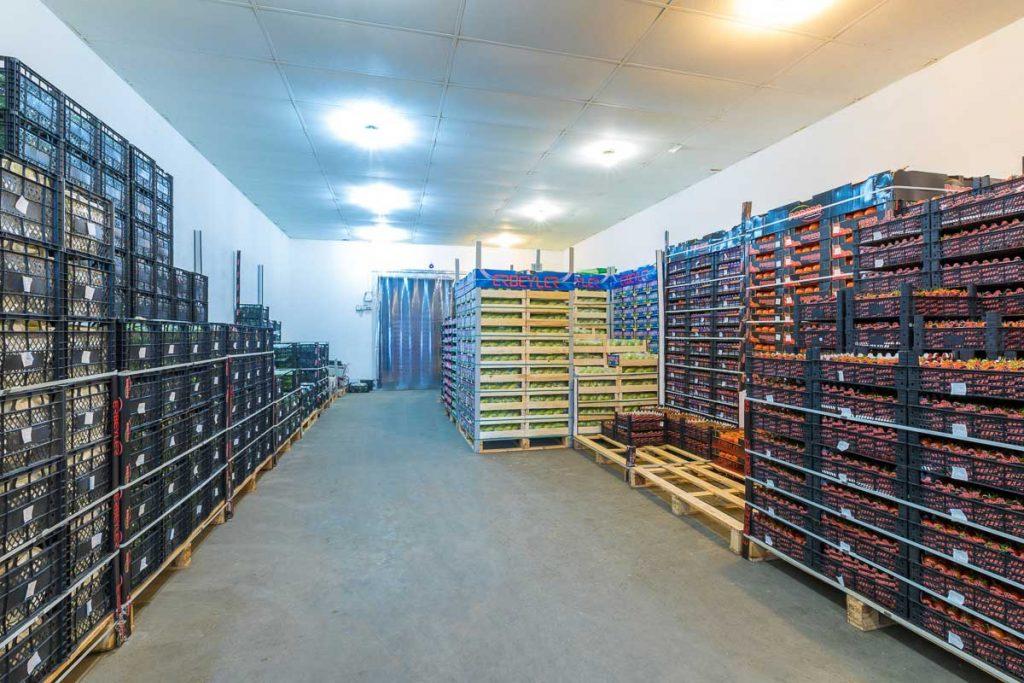хладилна камера пълна със стока от заснемане на складове